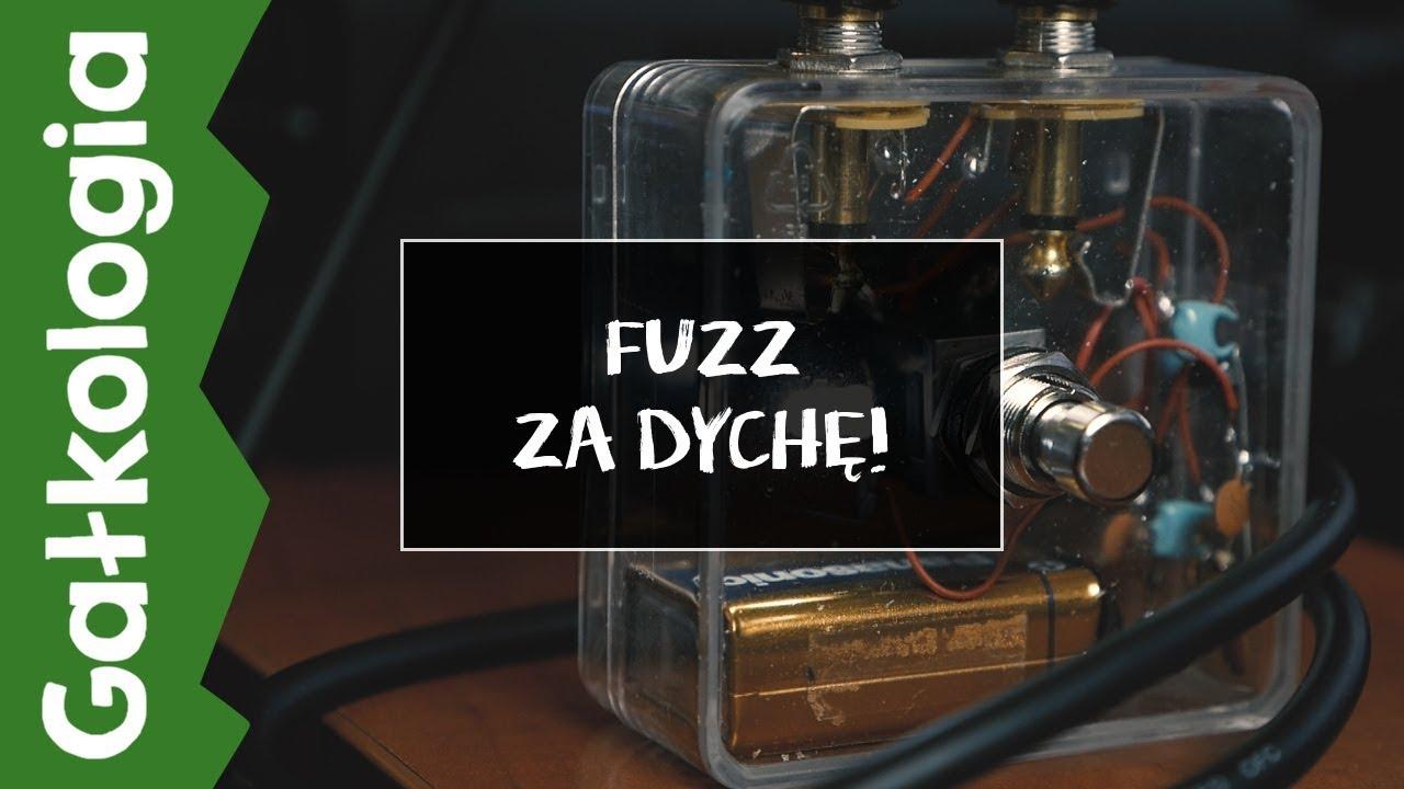 [GAŁKOLOGIA] Fuzz za 10zł!